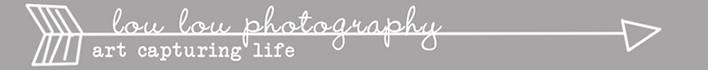 Salt Lake City Photographer{Lou Lou Photography}Utah fine art newborn, infant, child and family photography logo